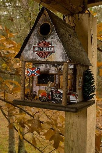 Cool Birdhouses - by Ted @ LumberJocks.com ~ woodworking community on interesting mouse designs, interesting floral designs, interesting house designs, interesting book designs, interesting garden designs, interesting heart designs, interesting chair designs, interesting box designs, interesting furniture designs, interesting dragon designs, interesting shelf designs, interesting art designs, interesting creature designs, interesting boat designs, interesting fence designs, interesting jewelry designs, interesting vase designs, interesting pumpkin designs, interesting tree designs, interesting clock designs,