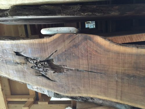 Filling Large Void Cavity In Live Edge Walnut Slab By