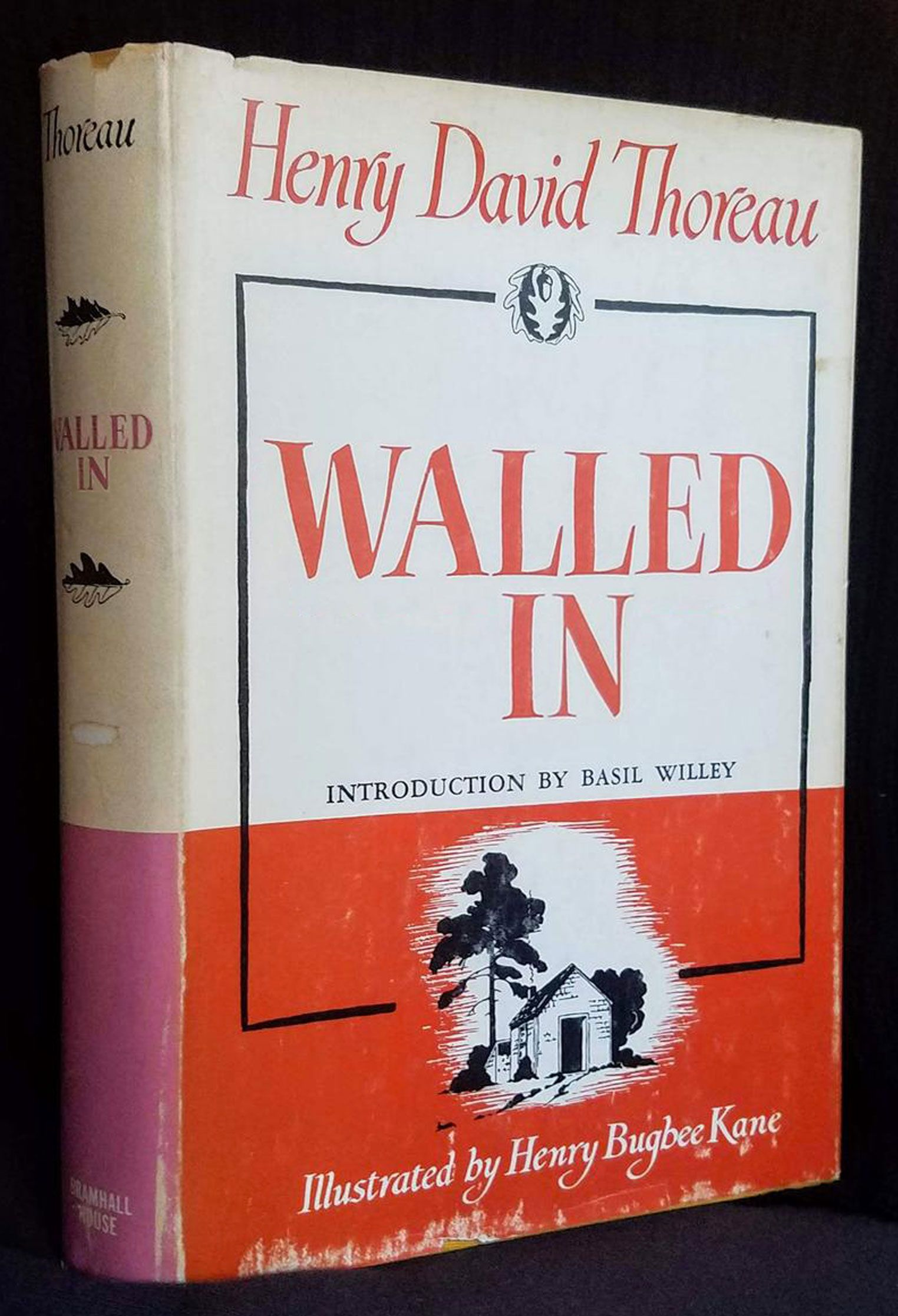 Walled In (Walden, by Henry David Thoreau)