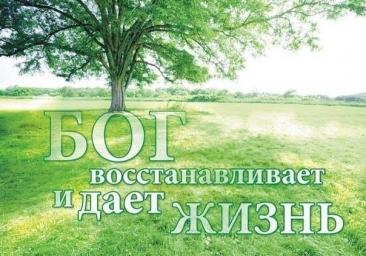 11705364_1028356807176966_3154839027905241264_n.jpg