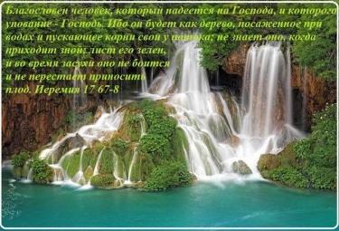 60685_858590950820220_1034716843494607059_n.jpg
