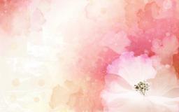 113207-rastsvet-cvetochnyj_dizajn-persik-cvet-rozovyj-1680x1050.jpg