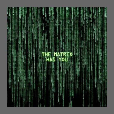 The Matrix Has You