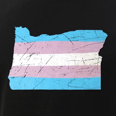 Transgender Pride State Silhouettes
