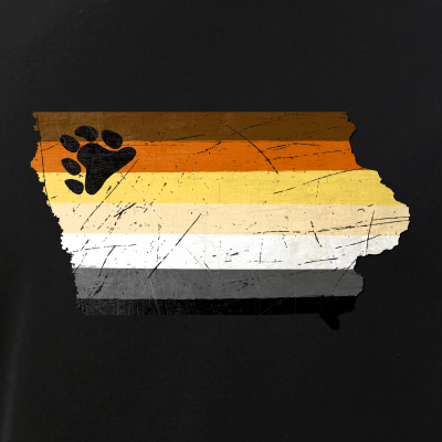 Iowa Silhouette Bear Pride Flag