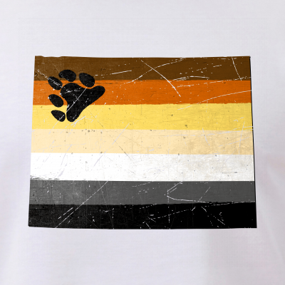 Wyoming Silhouette Bear Pride Flag