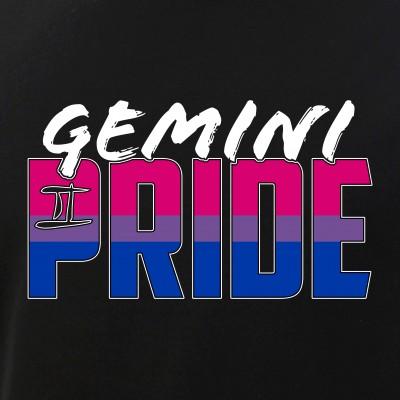 Gemini Bisexual Pride Flag Zodiac Sign