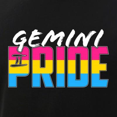 Gemini Pansexual Pride Flag Zodiac Sign