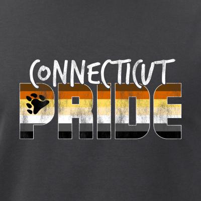 Connecticut Pride Gay Bear Flag
