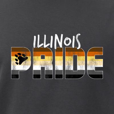 Illinois Pride Gay Bear Flag