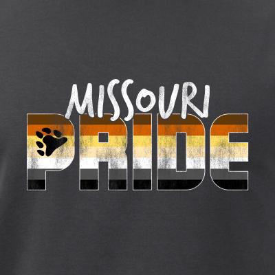 Missouri Pride Gay Bear Flag