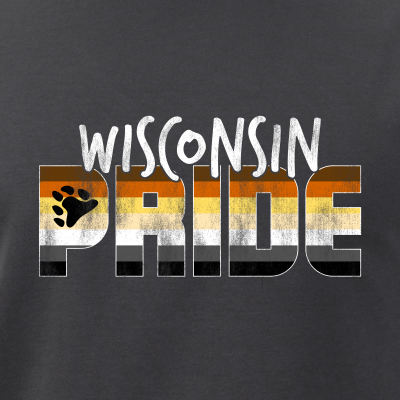 Wisconsin Pride Gay Bear Flag