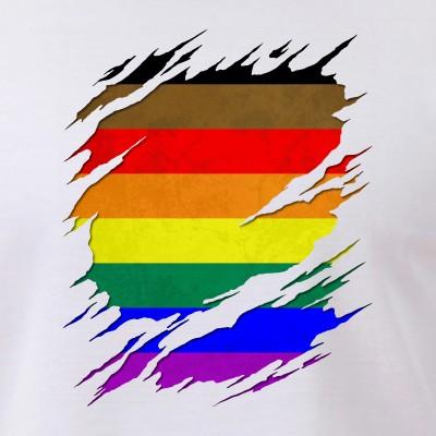 Philly LGBTQ Pride Flag