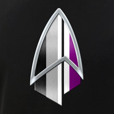 Asexual Pride Flag PIC Combadge