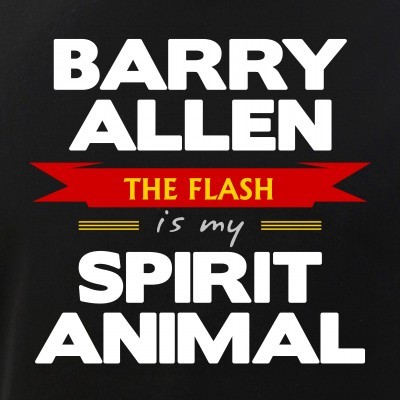 Barry Allen is my Spirit Animal