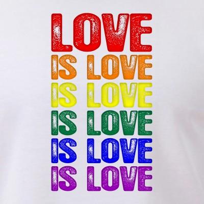LGBT Gay Pride Flag Love is Love is Love