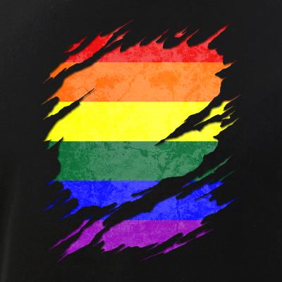 LGBT Gay Pride Flag Ripped Reveal