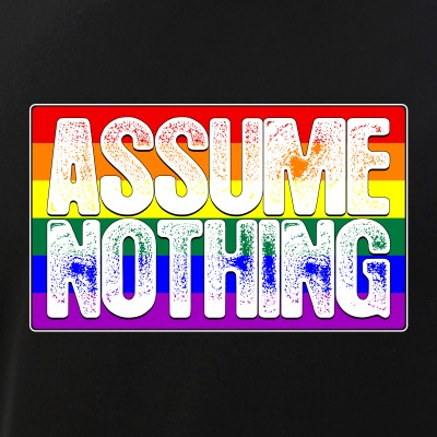 Assume Nothing LGBTQ Gay Pride Flag