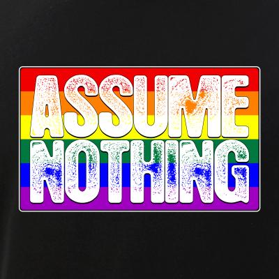 Assume Nothing LGBT Gay Pride Flag