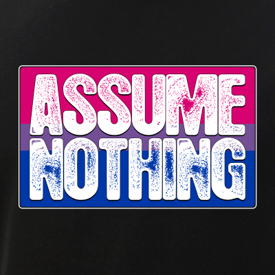Assume Nothing Bisexual Pride Flag