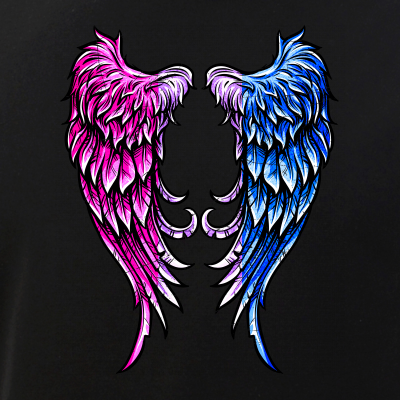 Distressed Bisexual Pride Angel Wings