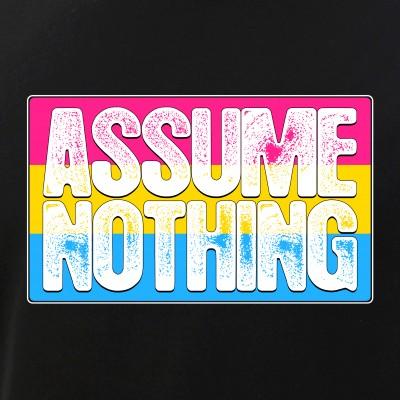 Assume Nothing Pansexual Pride Flag