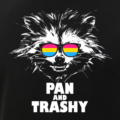 Pan and Trashy Raccoon Sunglasses Pansexual Pride