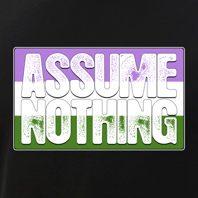 Assume Nothing Genderqueer Pride Flag