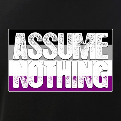 Assume Nothing Asexual Pride Flag
