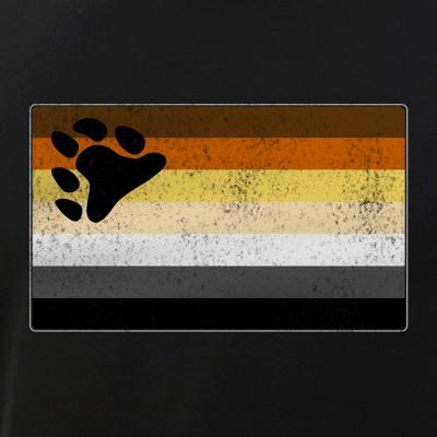 Distressed Gay Bear Pride Flag