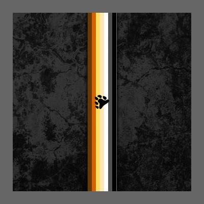 Gay Bear Pride Flag Stripe