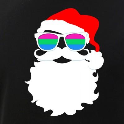 Santa Claus Polysexual Pride Flag Sunglasses