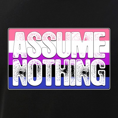 Assume Nothing Genderfluid Pride Flag