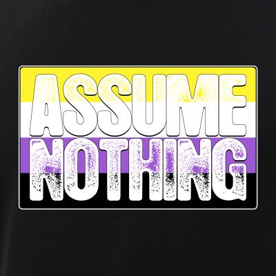 Assume Nothing Nonbinary Pride Flag