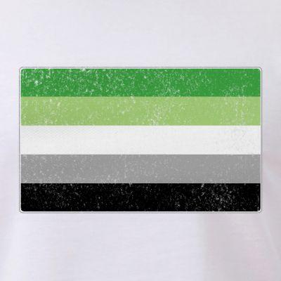 Distressed Aromantic Pride Flag