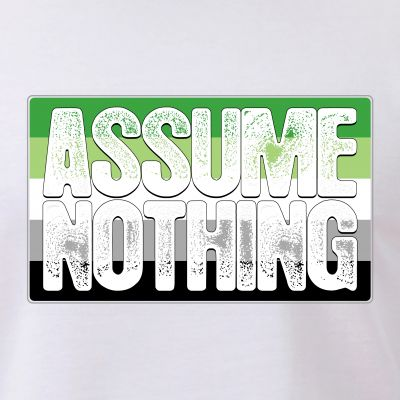 Assume Nothing Aromantic Pride Flag