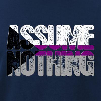 Assume Nothing Demisexual Pride