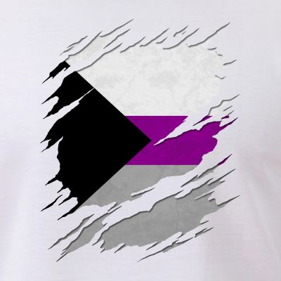 Demisexual Pride Flag Ripped Reveal