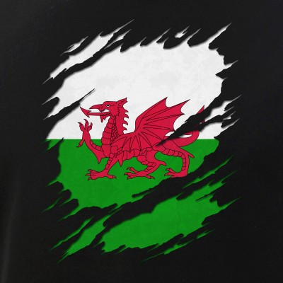 Flag of Wales Welsh Flag Ripped Reveal
