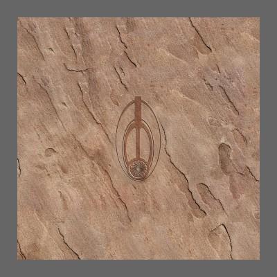 Bajoran Emblem