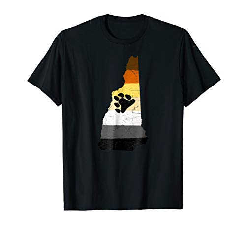 New Hampshire Silhouette Bear Pride Flag T-Shirt