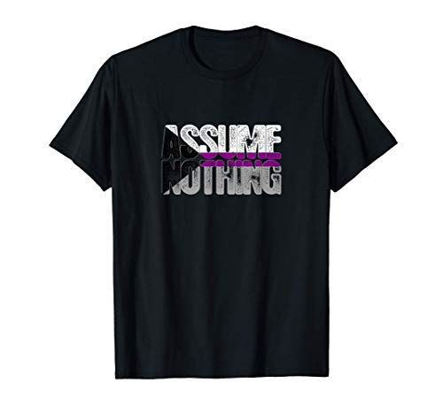 Assume Nothing Demisexual Pride T-Shirt