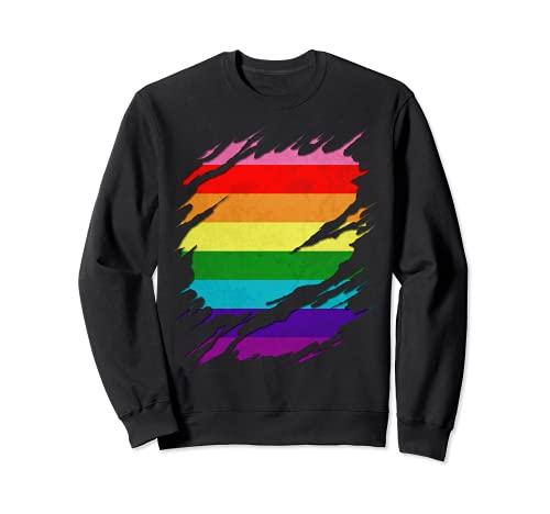 Original Gilbert Baker LGBT Gay Pride Flag Ripped Reveal Sweatshirt