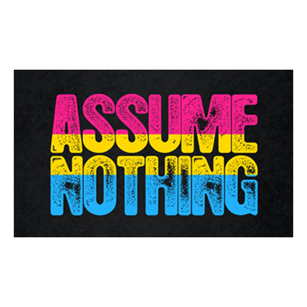 Assume Nothing Pansexual Pride Rectangle Sticker