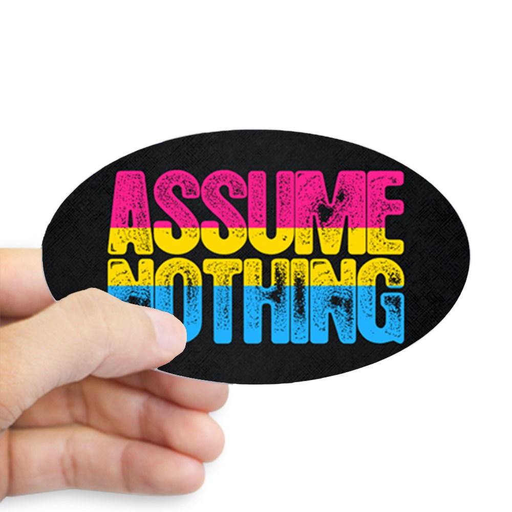Assume Nothing Pansexual Pride Oval Sticker