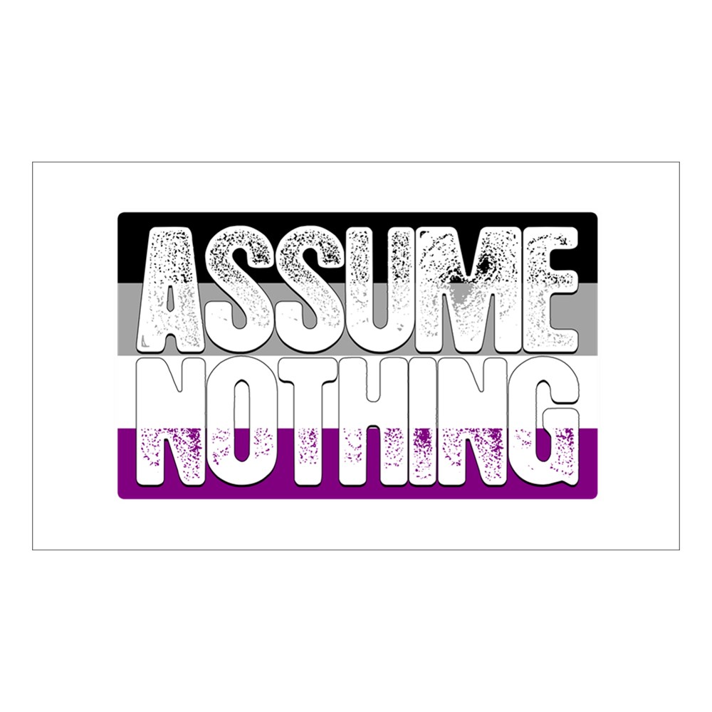 Assume Nothing Asexual Pride Flag Rectangle Sticker