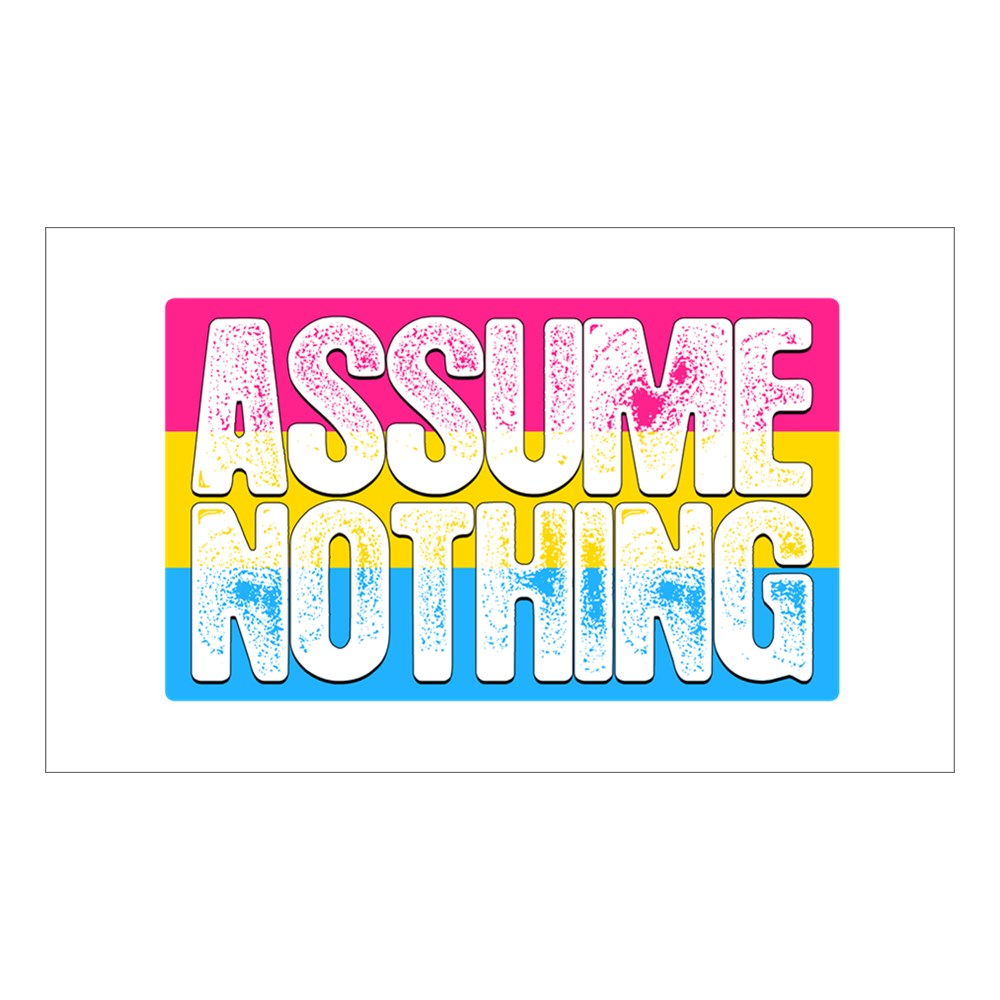 Assume Nothing Pansexual Pride Flag Rectangle Sticker