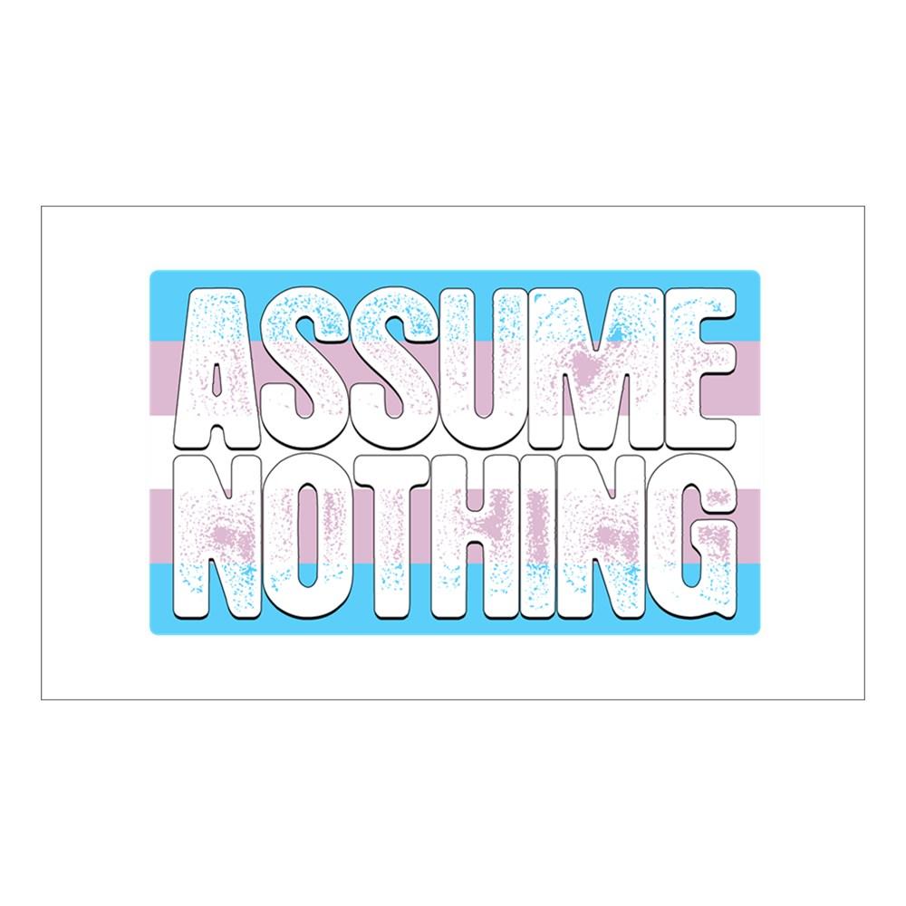 Assume Nothing Transgender Pride Flag Rectangle Sticker