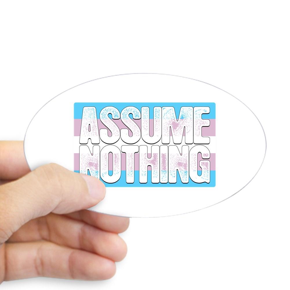 Assume Nothing Transgender Pride Flag Oval Sticker