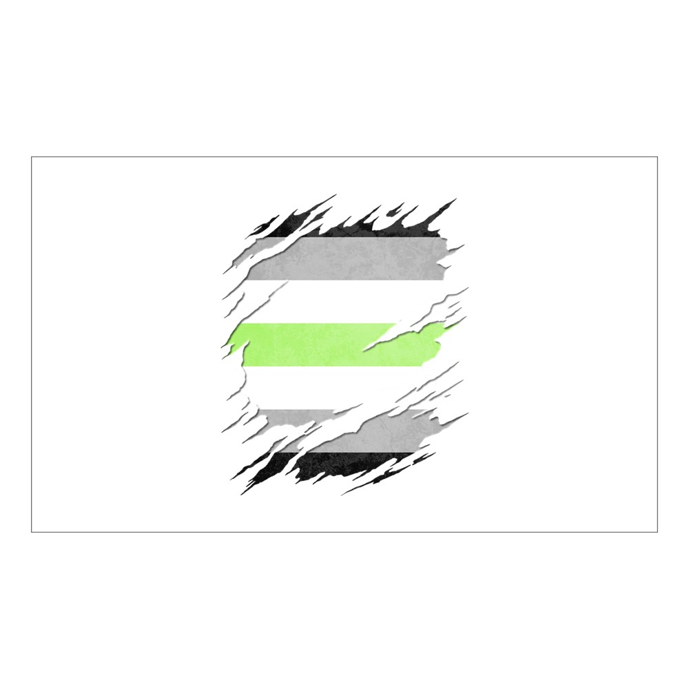 Agender Pride Flag Ripped Rectangle Sticker